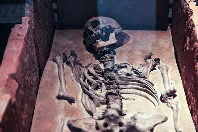 Exhumierung – Informationen zu Exhumierungen