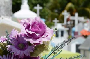 Die Trauerfeier nach einer Urnenbeisetzung