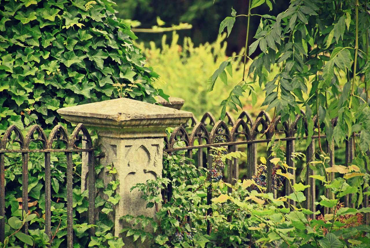 Wann endet der Friedhofszwang