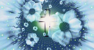 Urnenbeisetzung Ablauf Katholisch