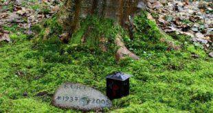 Urnengrabsteine - liegend oder stehend